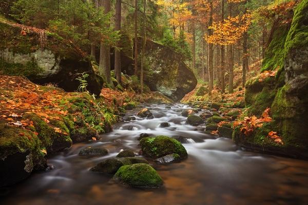 Řeka Křinice je jedním z míst, kde budeme společně fotit během víkendového foto workshopu Podzimní Českosaské Švýcarsko