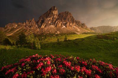 Sas de Puta během bouřky při letním západu slunce s trsem rozkvetlých azalek v popředí