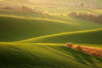 Podvečení světlo v malebné krajině Jižní Moravy zachycené při fotoworkshopu