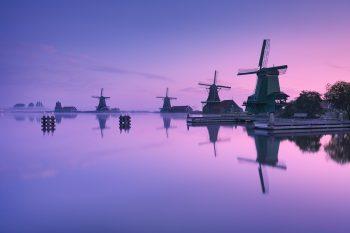 Mlhavé ráno u vodního kanálu s větrnými mlýny v oblasti Zaanse Schans, Severní Holandsko, Nizozemsko.
