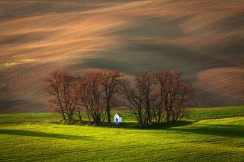 Remízek s kapličkou sv. Barborky v jarních polích Jižní Moravy