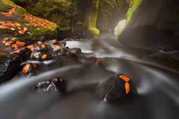 Řeka Křinice v Kyjovském údolí v Českém Švýcarsku při podzimním foto workshopu