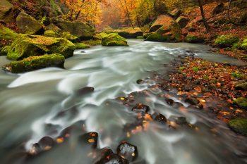 Zajímavý fotoobraz s motivem řeky Kamenice nedaleko Hřenska v Národním parku České Švýcarsko