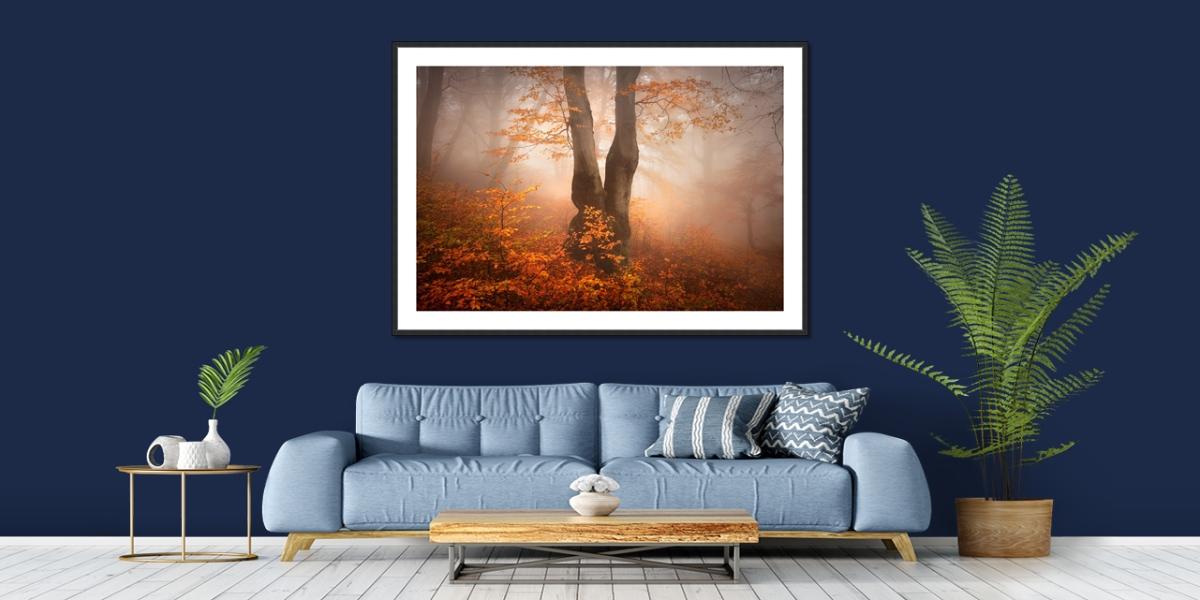 Tucet nejžádanějsích motivů pro fotografické obrazy - originální fotoobraz podzimního mlhavého bukového lesa v Krušných horách na stěně interiéru