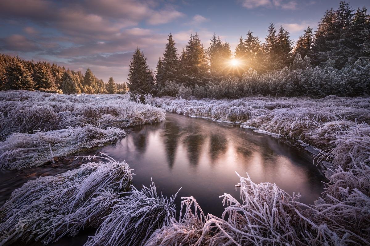 Mrazivé ráno u horského potoka se silně ojíněnou a namrzlou trávou při východu slunce v Krušných horách nedaleko vodní nádrže Fláje