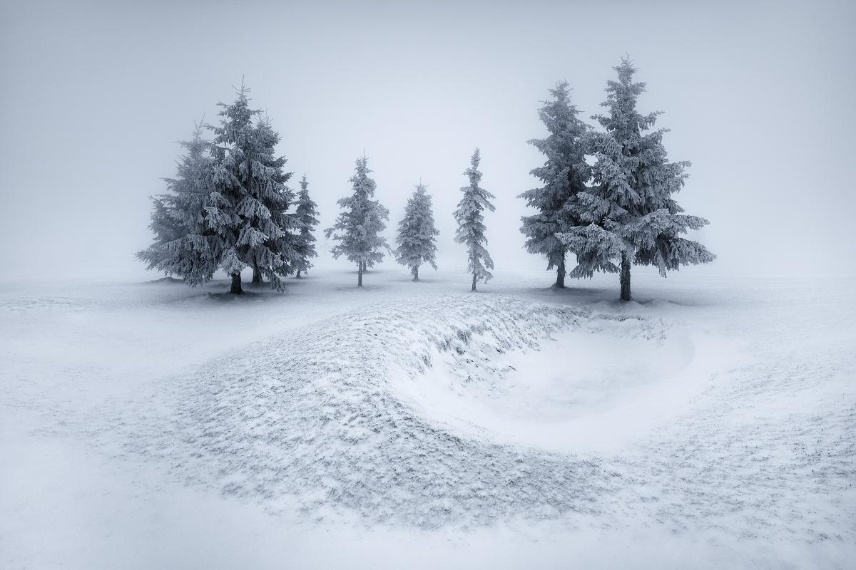 Ojíněné a namrzlé smrky na krušnohorských pláních při mlhavém a mrazivém počasí v srdci Krušných hor.