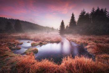 Ranní atmosféra s červánkovou oblohou u meandrů horského potoka v Krušných horách nedaleko přehrady Fláje