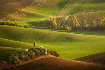 Rozkvetlé remízky, zelená a hnědá jarní pole jsou lákadlem různých fotografických workshopů z celého světa